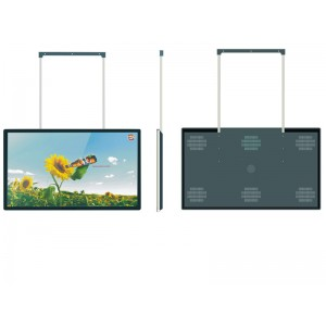 "42"" Cellingl-mounted Screen"